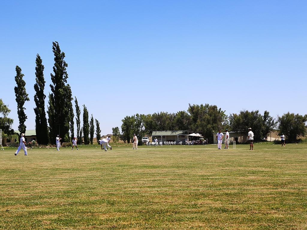 Priors Cricket